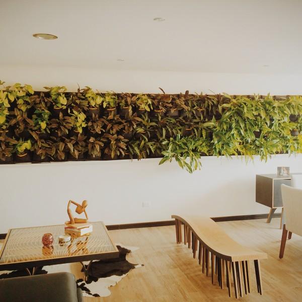 Système de jardinage vertical et intérieur