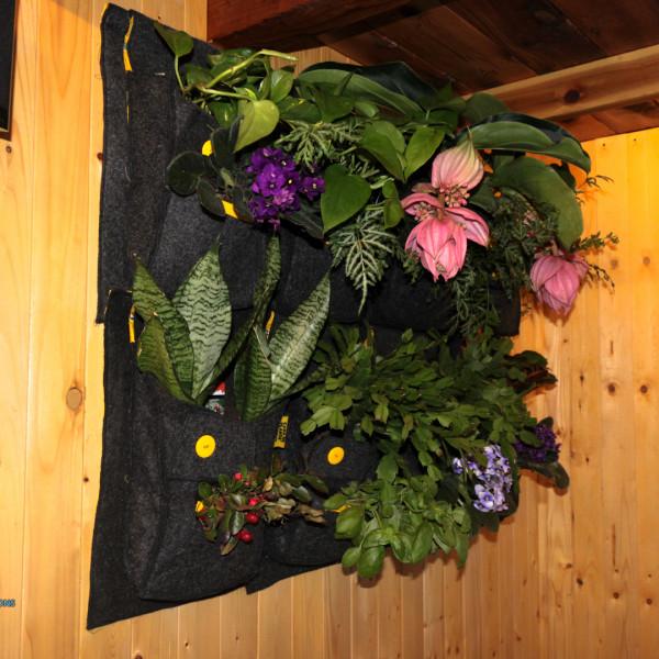Syst me de jardinage vertical et int rieur for Jardinage interieur