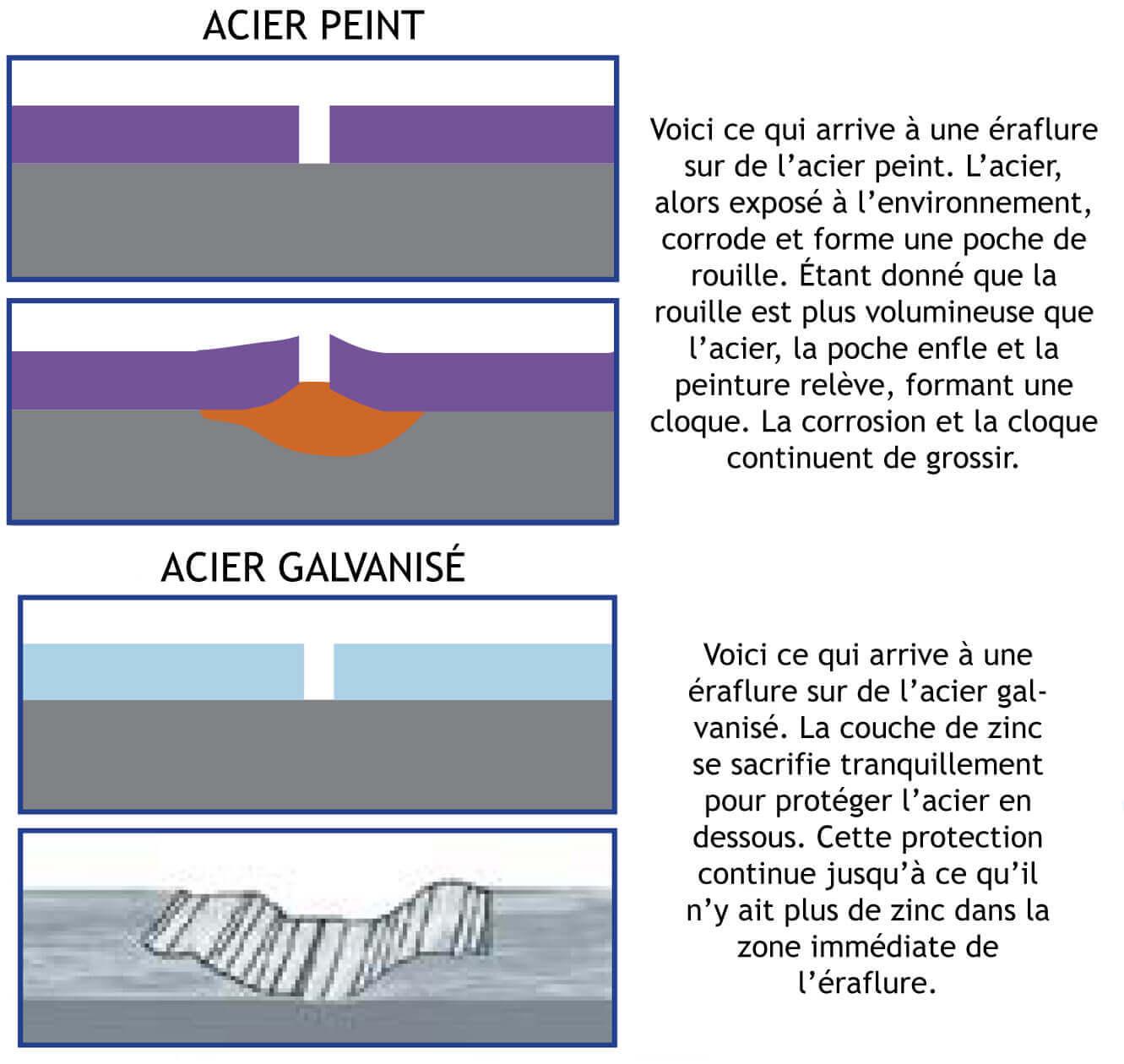 Acier peint vs acier galvanisé
